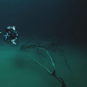 Cenote Adventures Stefan Angelita