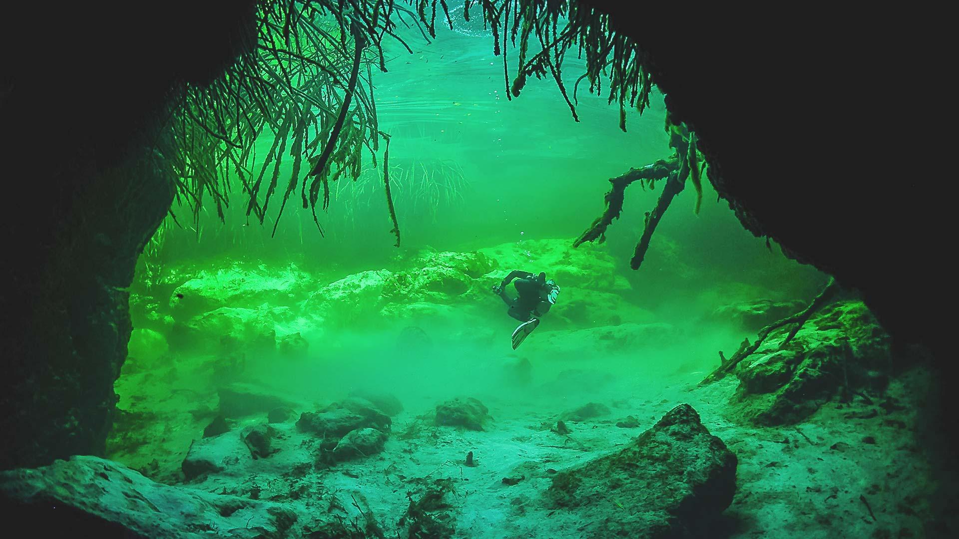 Casa Cenote Tauchen