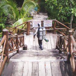 Tauchen in Grand Cenote